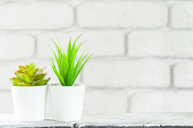 Plantes d'intérieur en pots sur tableau blanc au mur de briques blanches avec des objets