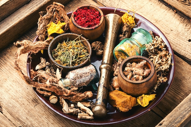 Plantes médicinales et racines