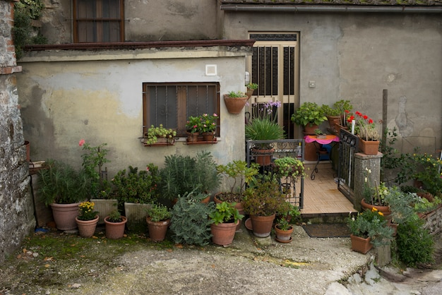 Plantes en pot à l'extérieur d'une maison, chianti, toscane, italie