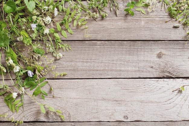 Plantes sauvages sur le vieux fond en bois foncé