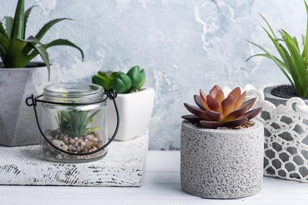 Plantes succulentes dans divers pots en béton et en verre sur étagère blanche.