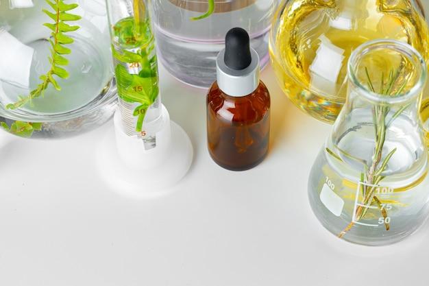 Plantes en verrerie de laboratoire. produits de soins de la peau et médicaments concept de recherches chimiques