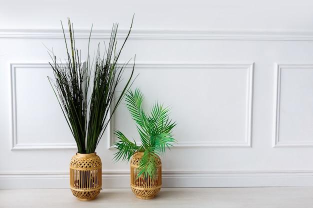 Plantes vertes dans des vases et paille lumineuse sur le sol devant un mur blanc
