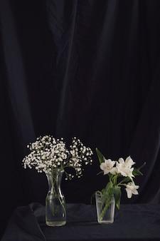 Plantes vertes et fleurs en vases