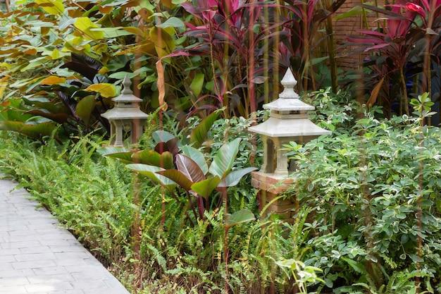 Plantes vertes de jardin en plein air dans la station, stock photo