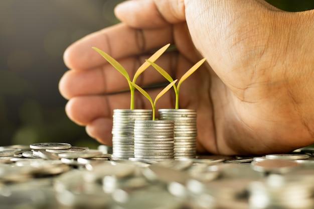 Les plants poussent sur des pièces de monnaie.