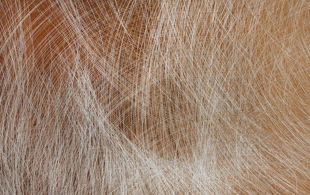 Plaque de cuivre abstraite avec rayures