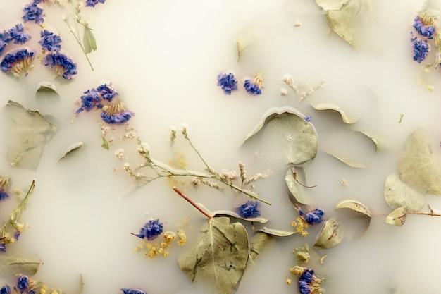 Plat poser des fleurs bleu foncé dans de l'eau de couleur blanche