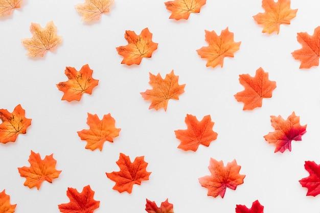 Plat poser de texture de feuilles d'automne