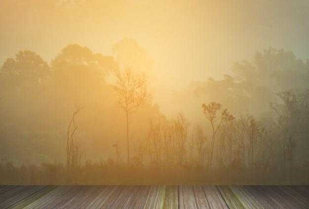 Plate-forme en bois à côté des forêts tropicales tropicales en thaïlande