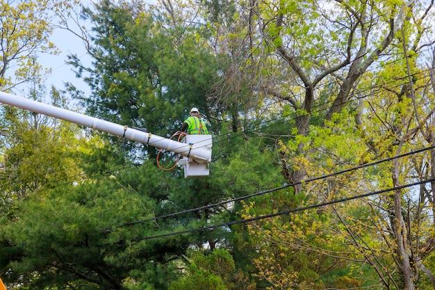 Plate-forme de travail aérien avec élagage saisonnier des arbres au printemps sur la rampe hydraulique de soins des arbres dans la suppression des branches supplémentaires