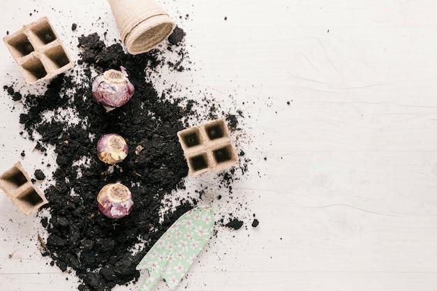 Plateau de tourbe; pot de tourbe; oignon; showel et sol sur table en bois