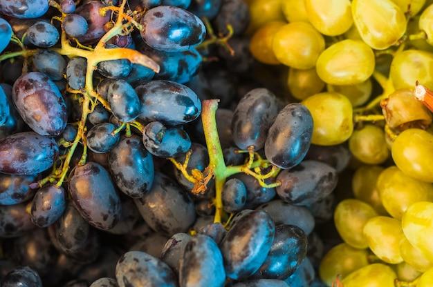 Plein cadre de fruits de raisins noirs et verts