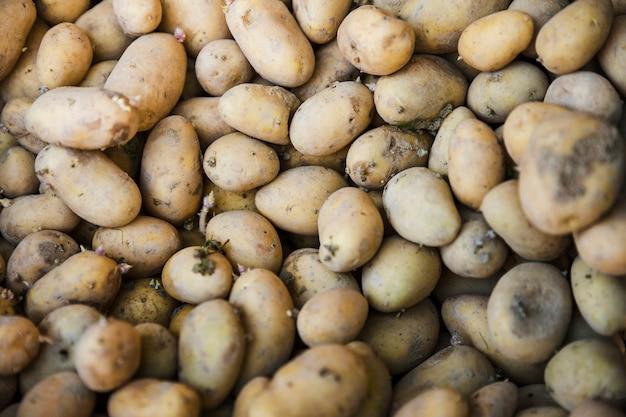 Plein cadre de pommes de terre biologiques fraîches