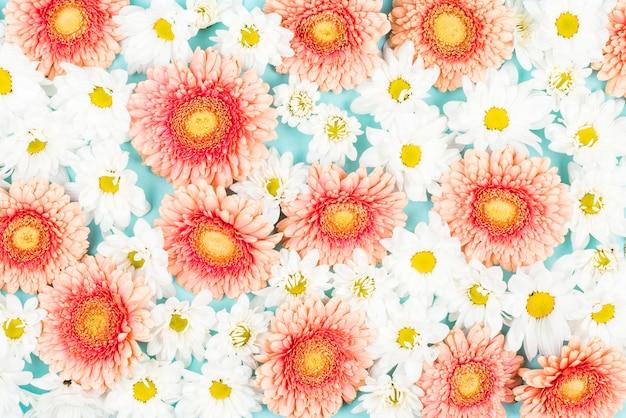 Plein cadre de toile de fond de fleurs blanches et roses