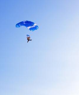 Plongeant dans les airs