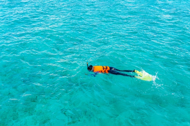 Plongée masculine nature île lagune