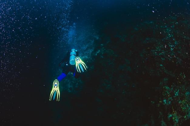 Le plongeur explore un récif corallien