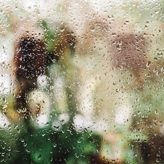 Pluie sur la fenêtre