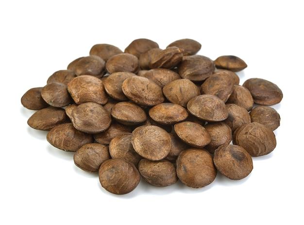 Plukenetia volubilis - graines séchées de fruit sacha