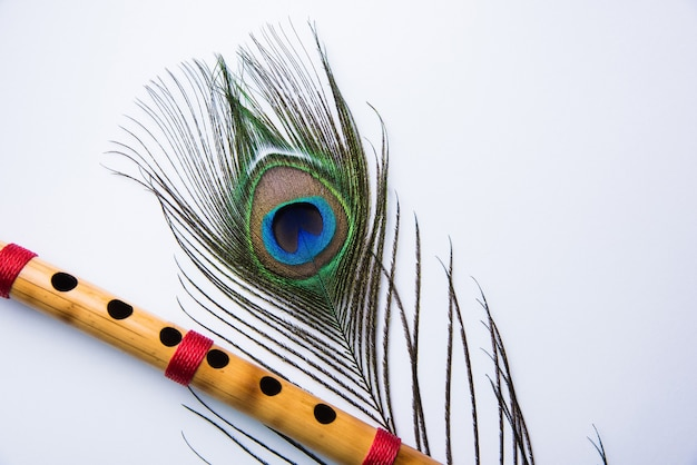 Plume de paon et flûte de bambou sur fond coloré