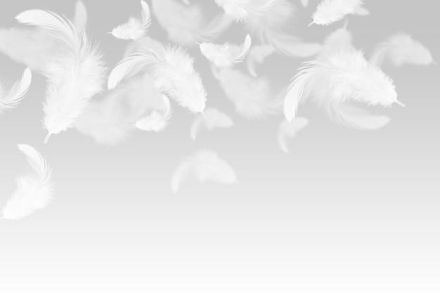 Plumes blanches abstraites tombant dans l'air