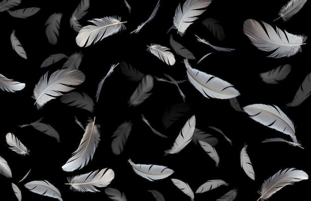 Plumes blanches flottant dans l'air
