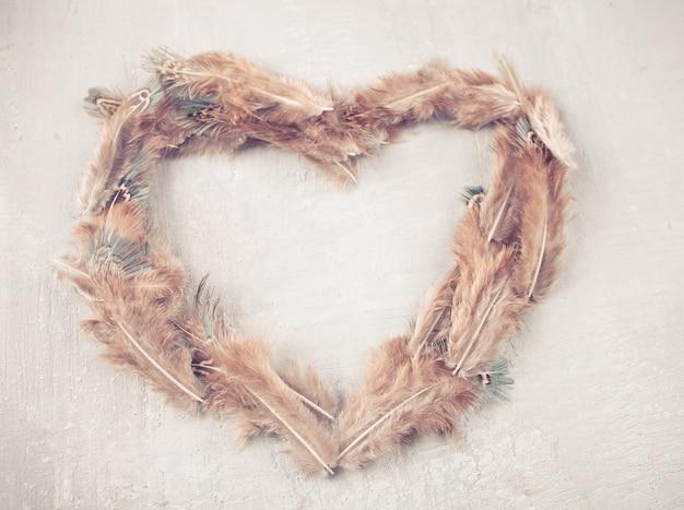 Plumes brunes disposées en forme de coeur sur fond blanc