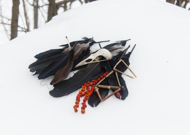 Plumes de corbeau, crâne d'oiseau et perles de rowan dans la neige.
