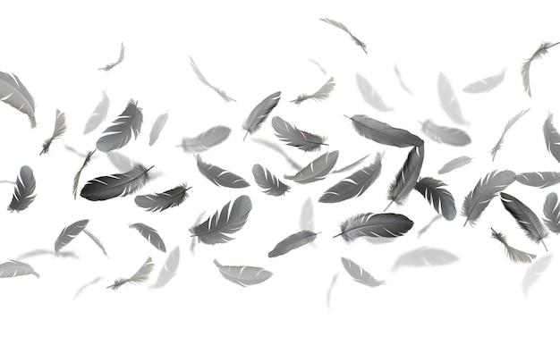 Des plumes noires flottent dans l'air