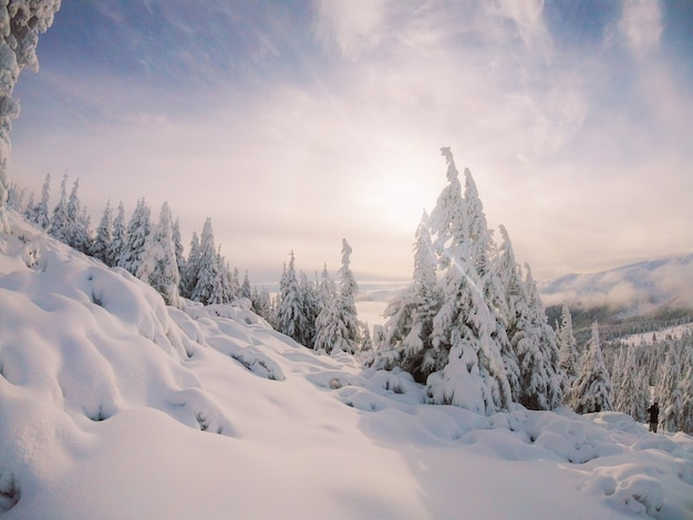 La plus belle nature ukrainienne