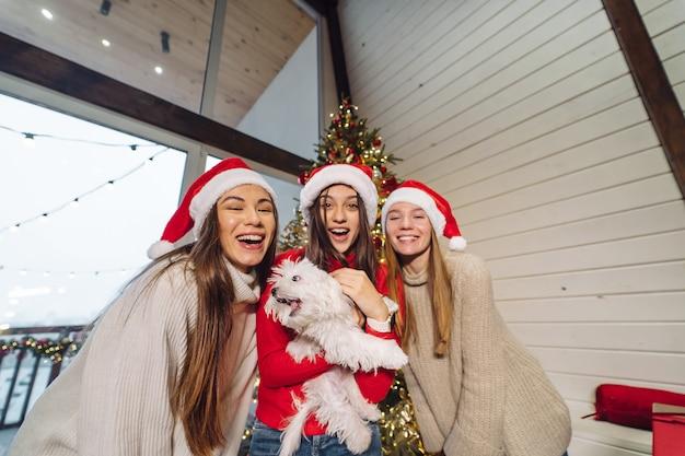 Plusieurs filles jouent avec un petit chien le soir du nouvel an à la maison