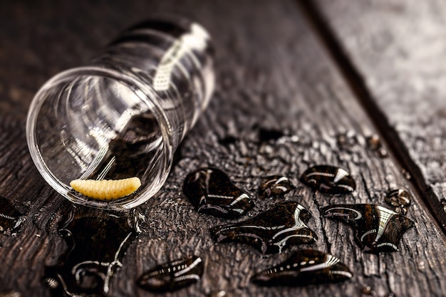 Plusieurs verres avec du mezcal (ou mescal) sont communément appelés