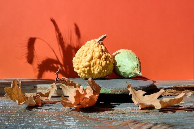 Podium en brique d'automne moderne avec un décor naturel avec des ombres en orange et gris