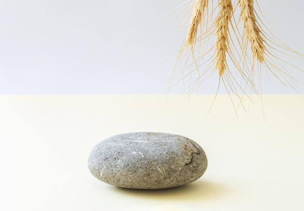 Podium ou plate-forme en pierre avec plante séchée, arrière-plan pour produit cosmétique