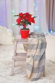 Poinsettia de fleur de noël sur l'intérieur de vacances