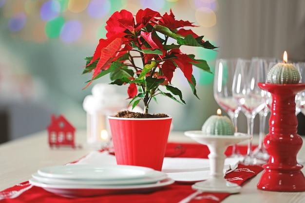 Poinsettia fleur de noël sur table, sur fond de lumières