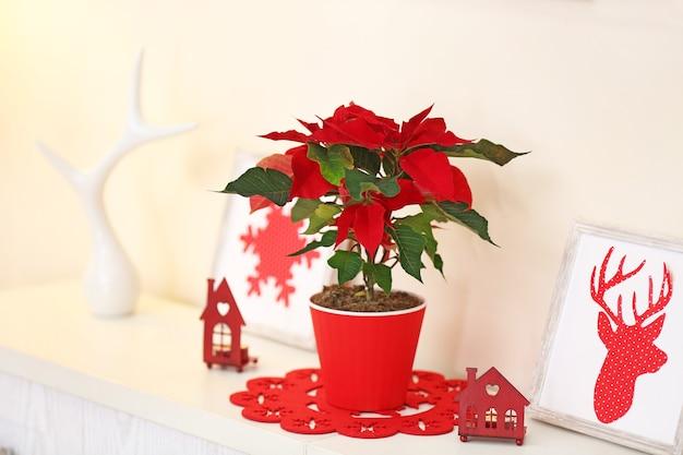 Poinsettia de fleurs de noël et décorations sur étagère