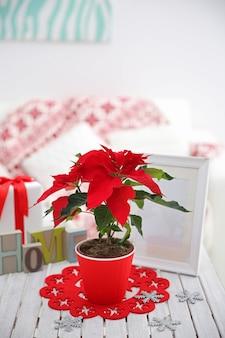 Poinsettia de fleurs de noël et décorations sur table avec décorations de noël, sur mur clair