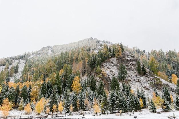 La pointe des montagnes couvertes de premières neiges