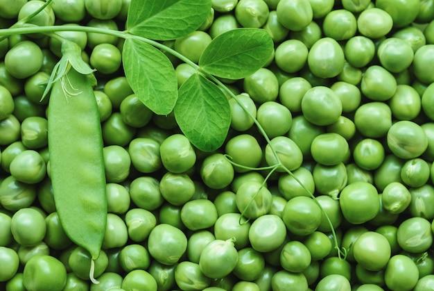 Pois verts, légumes frais de saison estivale, arrière-plans alimentaires