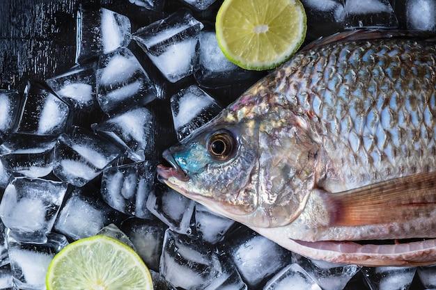 Poisson frais de tilapia sur glace à la pâte de citron.