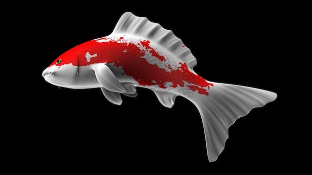 Poisson koi de rendu 3d coloré avec des motifs de couleur blanche et rouge et vue latérale