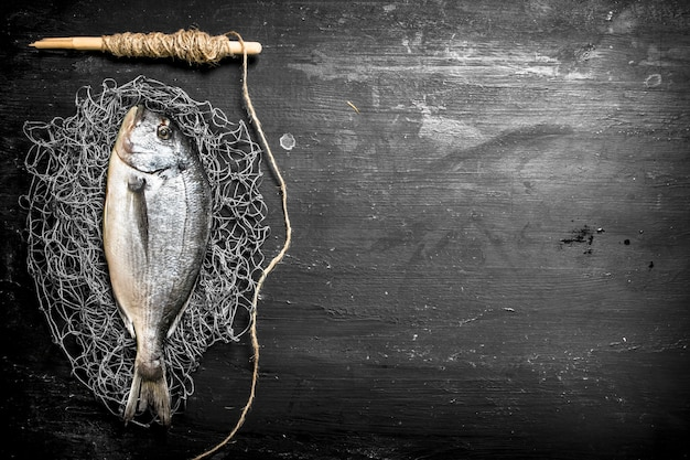 Poisson de mer frais sur filet de pêche sur tableau noir.