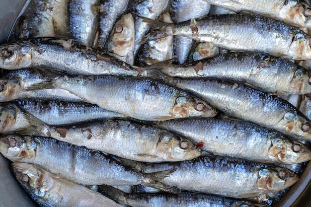 Poisson de mer salé au marché de rue à ubud, bali, indonésie. notion de fruits de mer. poisson cru pour la cuisson, gros plan
