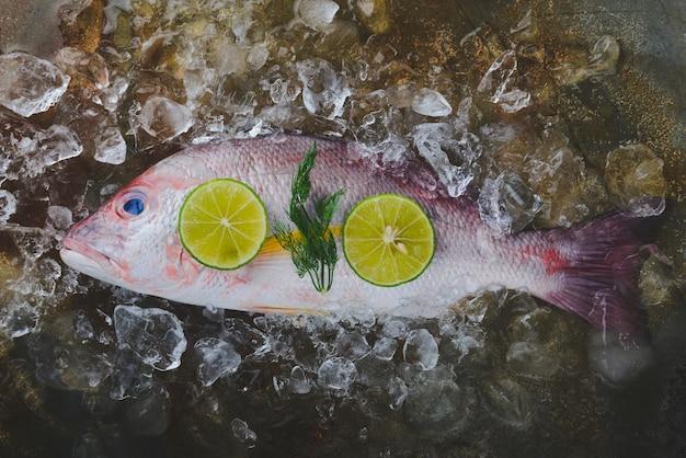Poisson de mer vivaneau rouge frais.