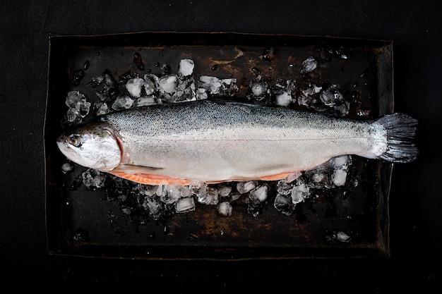 Poisson rouge saumon cru frais avec de la glace sur un fond sombre. plat poser. vue de dessus