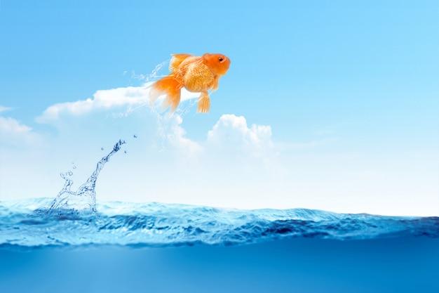 Poisson rouge sautant hors de l'eau