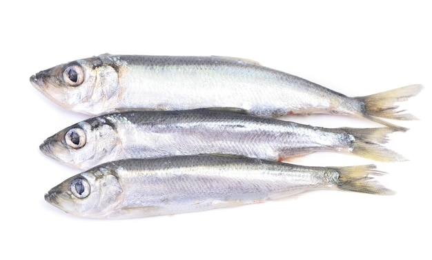 Poisson sprat