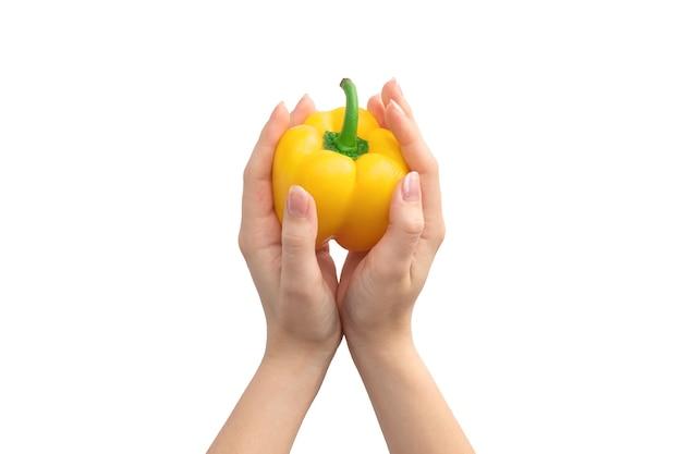 Poivron doux jaune dans les mains isolé sur fond blanc. gros plan de poivre bulgare mûr